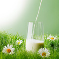 Pouring milk in a glass - PhotoDune Item for Sale