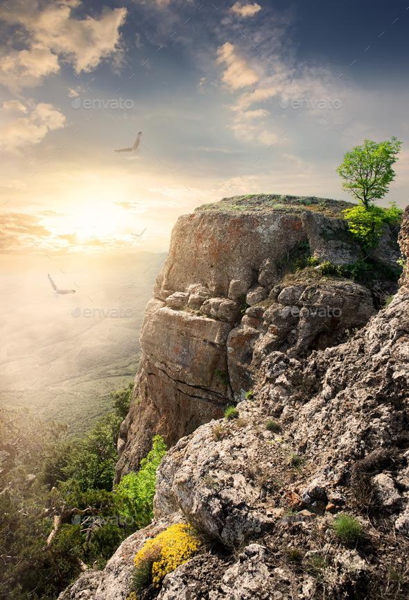 Mountain plateau