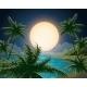 Tropical Seascape - GraphicRiver Item for Sale