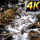 Waterfall Creek in Nature 2 - VideoHive Item for Sale