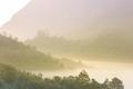 Beautiful sunrise in a misty rainforest. - PhotoDune Item for Sale