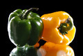 green and yellow sweet pepper  on a black background - PhotoDune Item for Sale