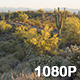 Sunrise over Arizona Desert Hiking Trail - VideoHive Item for Sale