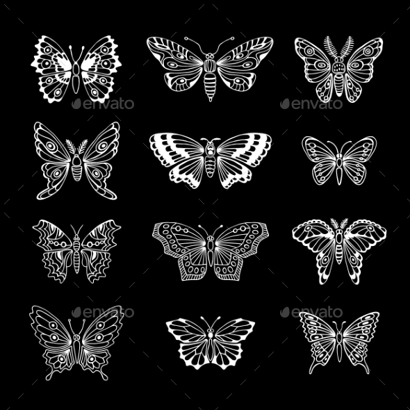 GraphicRiver Set Of Butterflies Decorative Isolated Silhouettes 11230000