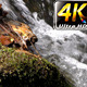 Waterfall Creek in Nature 8 - VideoHive Item for Sale