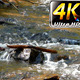 Waterfall Creek in Nature 9 - VideoHive Item for Sale