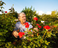 Man caring for roses in the garden - PhotoDune Item for Sale