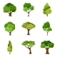 Set of Abstract Stylized Trees  - GraphicRiver Item for Sale