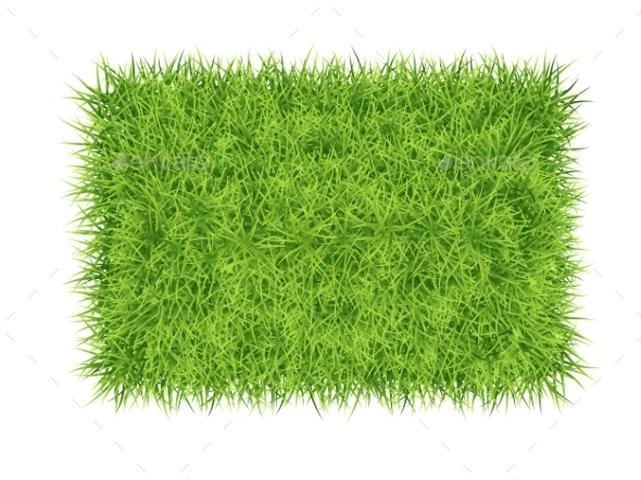 GraphicRiver Grass Carpet Background 11242182