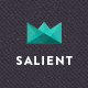 Salient - Responsive Multi-Purpose Theme - ThemeForest Item for Sale