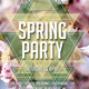 Spring Party Flyers - GraphicRiver Item for Sale