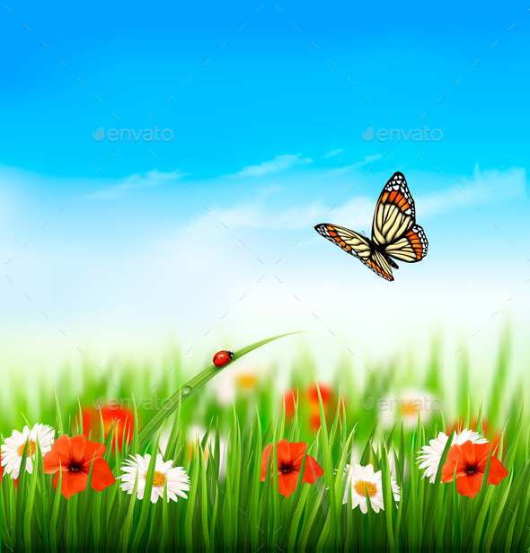 GraphicRiver Summer Background with Butterfly 11244222