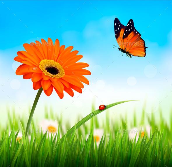GraphicRiver Spring Background Orange Flower 11244231