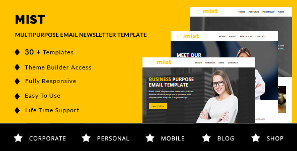 ThemeForest Mist 30 Business Email Templates & Themebuilder Access 11094856