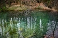 Small Pond at Plitvice lakes national park - PhotoDune Item for Sale