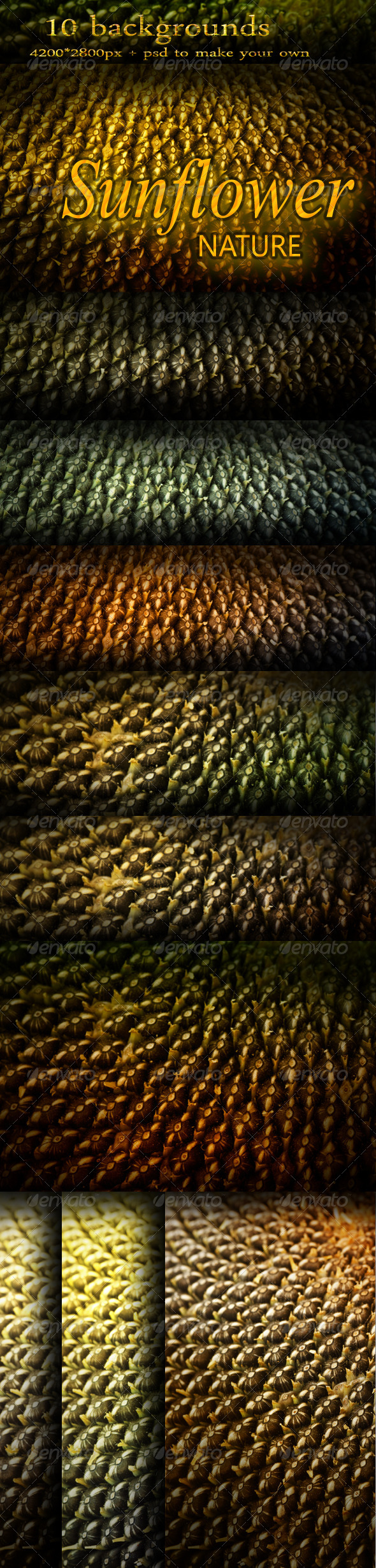 Abstract Nature Backgrounds with Sunflower Seeds - Nature Backgrounds