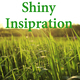 Shiny Inspiration