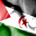 Western Sahara waving flag - PhotoDune Item for Sale