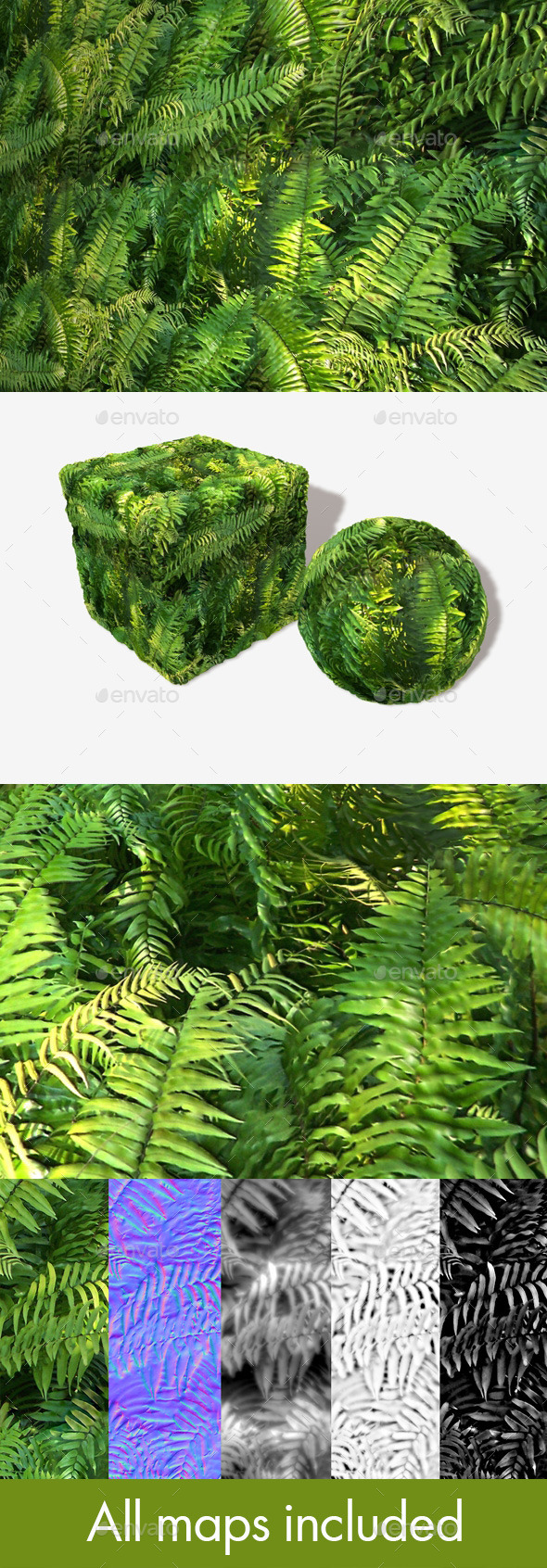 3DOcean Jungle Fern Seamless Texture 11251691