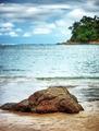 Beautiful beach landscape - PhotoDune Item for Sale