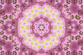Abstract background with natural flowers - PhotoDune Item for Sale