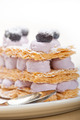 napoleon blueberry cake dessert - PhotoDune Item for Sale