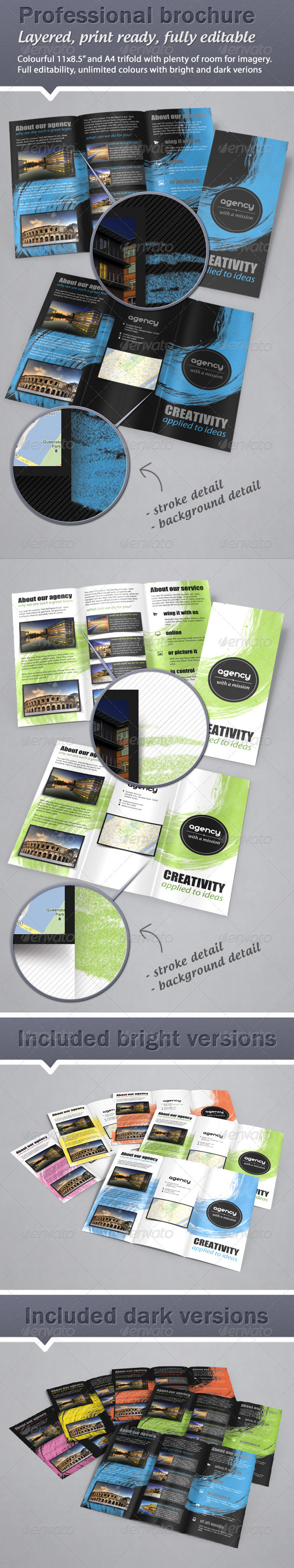 Colorful Fresh Trifold Brochure 11x8.5 & A4