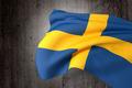 Sweden flag - PhotoDune Item for Sale