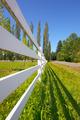 Sunny pasture - PhotoDune Item for Sale