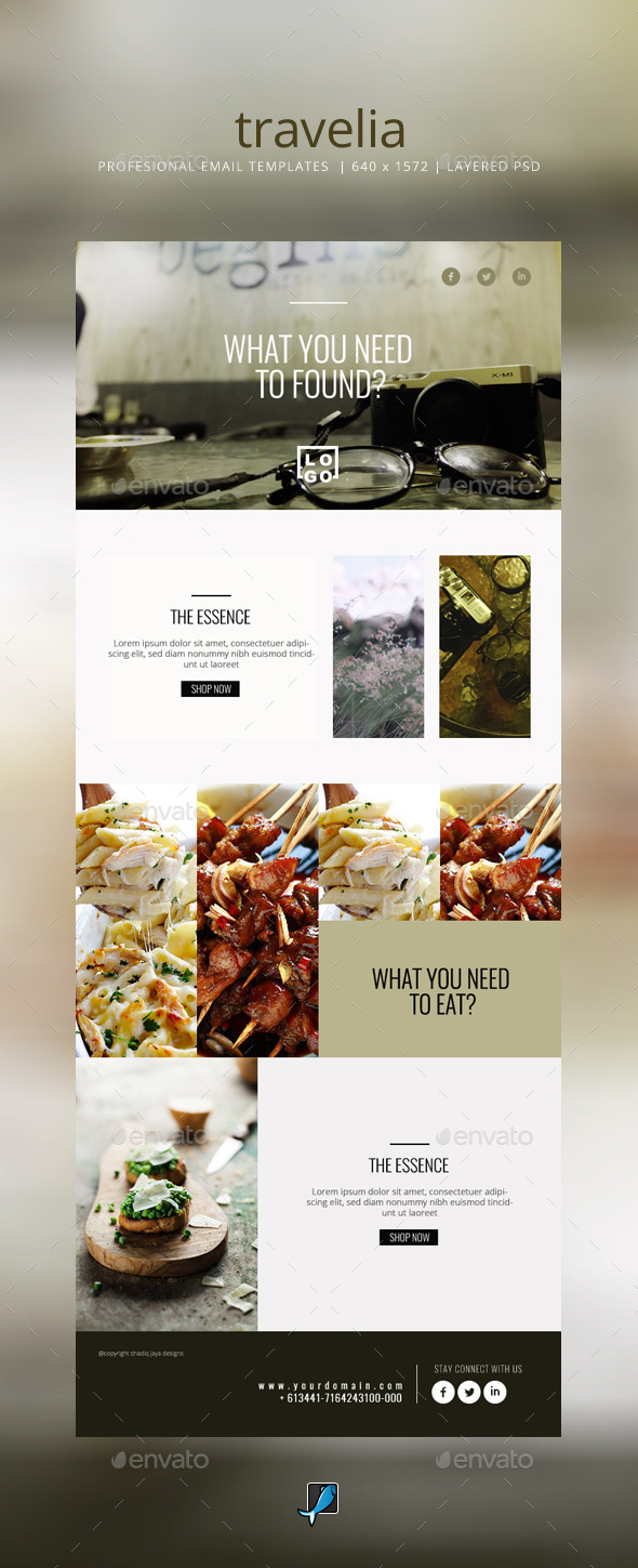 GraphicRiver Simple Email Templates Travelia- 11259269