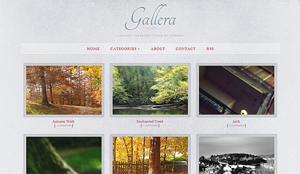 Gallera - Photo Gallery/Portfolio Theme for Tumblr - Theme Features