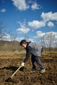 Teenager boy with a hoe sowing potatoes - PhotoDune Item for Sale