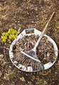 Spring cleaning in a garden - PhotoDune Item for Sale