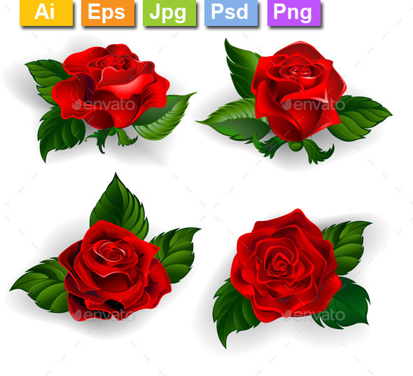 GraphicRiver Set of Red Roses 11265117