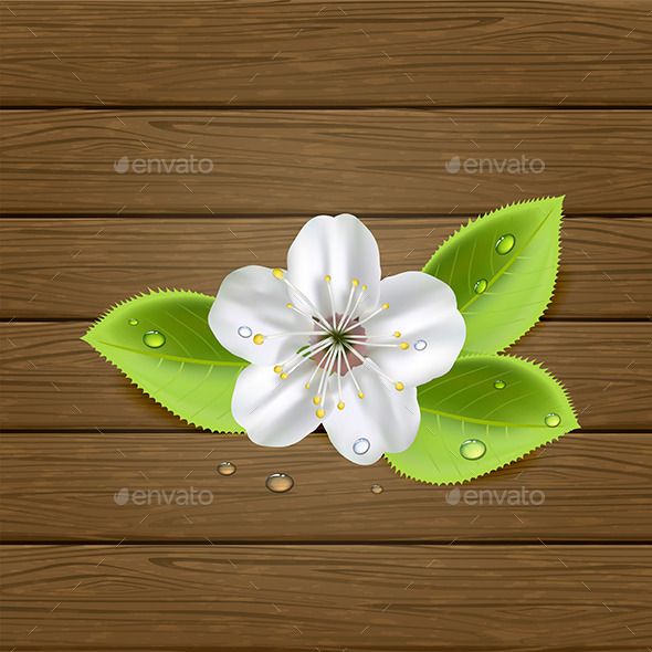 GraphicRiver Flower on Wooden Background 11268180