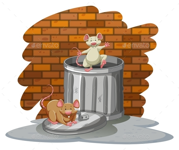 GraphicRiver Rats Playing with the Trashbin 11270245