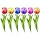 Tulip - GraphicRiver Item for Sale