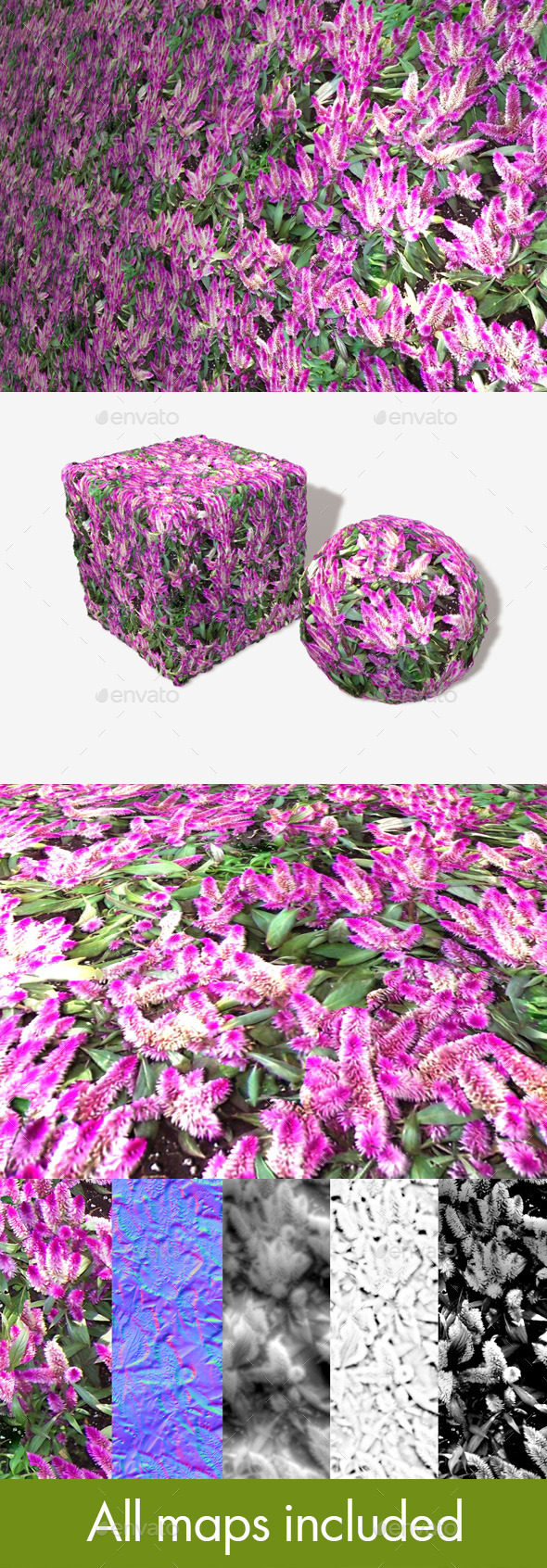 3DOcean Tropical Pink Flowers Seamless Texture 11273855