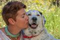 woman kissing pet rescue dog - PhotoDune Item for Sale