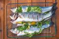 raw prepared sea bass - PhotoDune Item for Sale