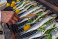 cooking fish for dinner on grill - PhotoDune Item for Sale