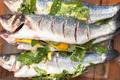 prepared sea bass fish - PhotoDune Item for Sale