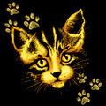 Cute Cat Portrait with Paws Prints - PhotoDune Item for Sale