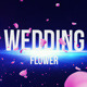 Wedding Flower Film Studio - VideoHive Item for Sale