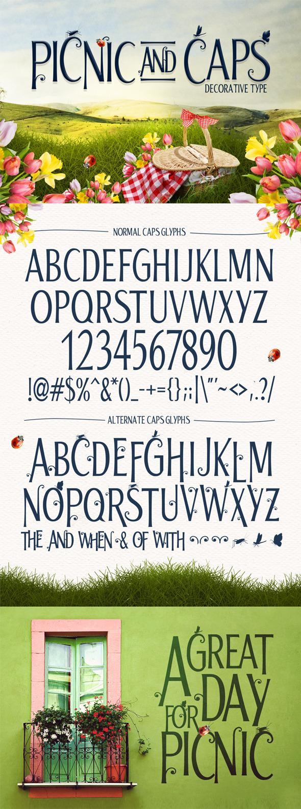 GraphicRiver Picnic Font 11277629
