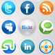 Social Network Buttons - ActiveDen Item for Sale