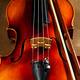 Violin close up - PhotoDune Item for Sale
