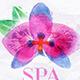 Set Natural Spa - GraphicRiver Item for Sale