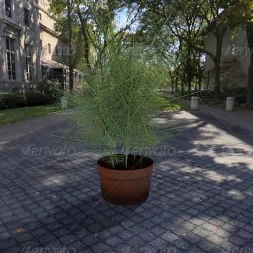 3DOcean plant 139371