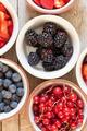 Berries - PhotoDune Item for Sale